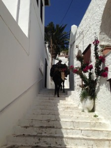 Donkeys go everywhere!  This is a picture of a donkey carrying a tourist's luggage up to their BnB.